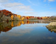 18th Oct 2014 - Fall Reflections