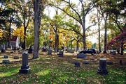 18th Oct 2014 - Siloam Cemetery
