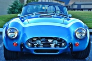 20th Oct 2014 - Shelby Cobra