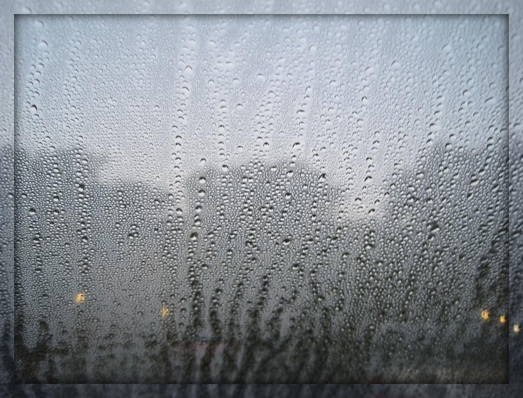 Misty Moisty Morning by allie912