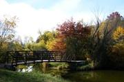 19th Oct 2014 - Autumn Bridge