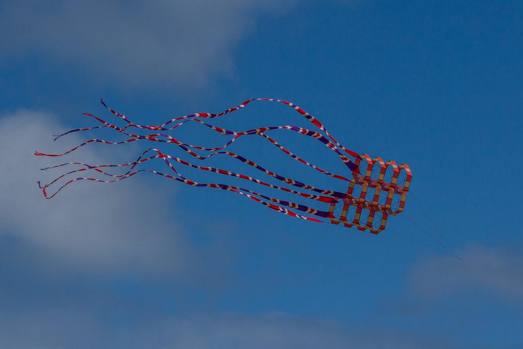 Kite by gosia