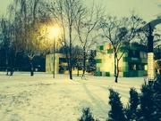 20th Oct 2014 - October Snow!