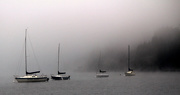 5th Oct 2014 - cropped boats