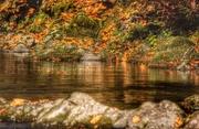 21st Oct 2014 - Salmon River