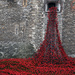 Tower of London Poppies by seanoneill