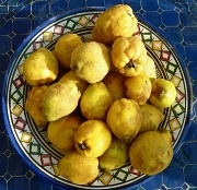 22nd Oct 2010 - A Surfeit Of Quince