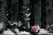 26th Oct 2014 - Pink