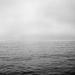 Seamists by peterdegraaff