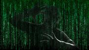 26th Oct 2014 - caught in the matrix