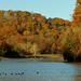 Lake at Bradys Run Park