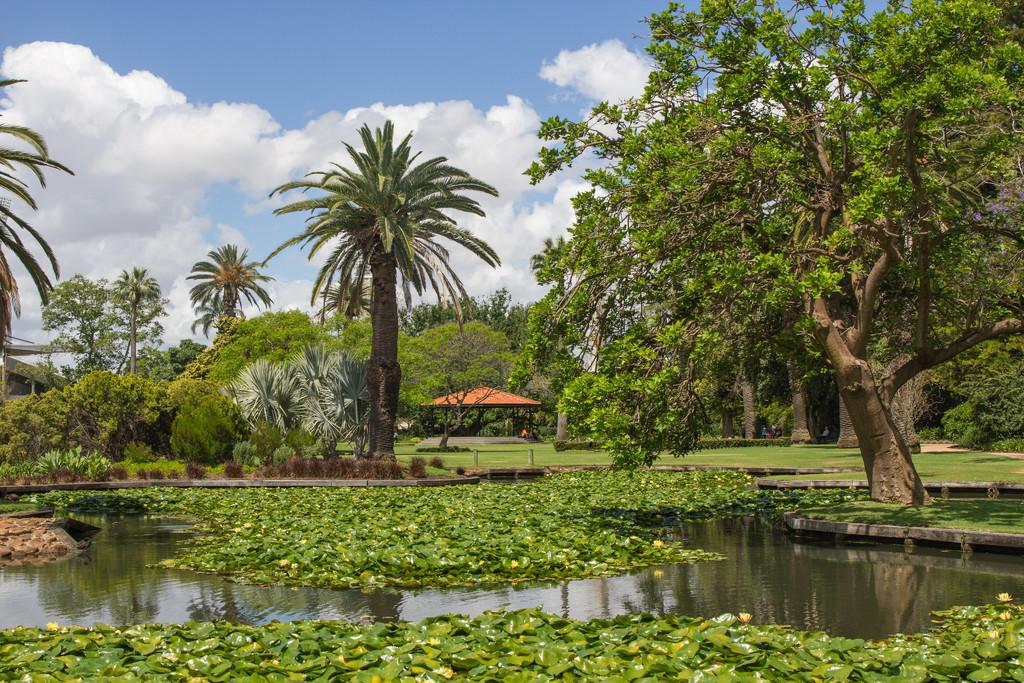 Queens Gardens by gosia