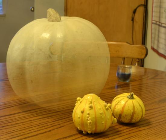 Ghost Pumpkin on 365 Project