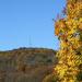 More colors in Pennsylvania