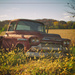 The Old Red Chevy Truck by lyndemc