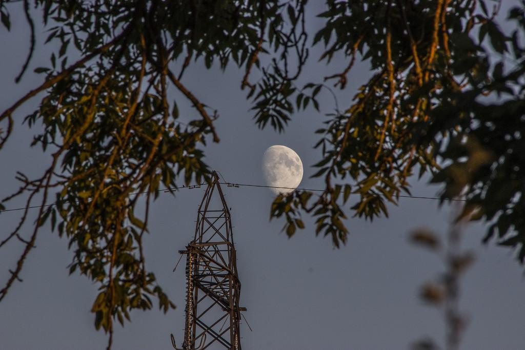Mooning around, missing the Rockies by shepherdman