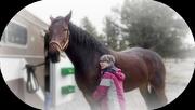 30th Oct 2014 - My Little Pony