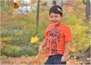 29th Oct 2014 - Fun with Leaves