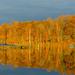 Peak At The Lake  by lesip