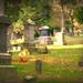 October Words- Graveyard