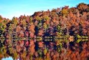 1st Nov 2014 - Lake reflections