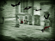 31st Oct 2014 - All Hallows Eve