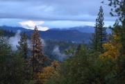 2nd Nov 2014 - Mountain Mist