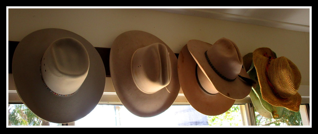 Akubra,s in the station homestead lounge. by 777margo