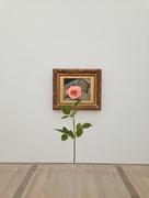 31st Oct 2014 - L'origine du monde, Gustave Courbet. Rose version.