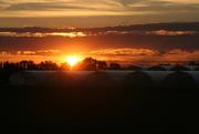 3rd Nov 2014 - Sunset