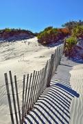 6th Nov 2014 - Sand dune, fence and shadows