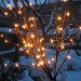 Snow and lights by allie912