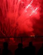 5th Nov 2014 - Firework Silhouettes