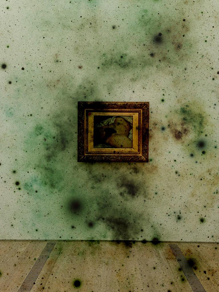 L'origine du monde, Gustave Courbet. Dirty version by cocobella