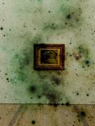 5th Nov 2014 - L'origine du monde, Gustave Courbet. Dirty version