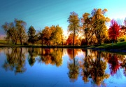 2nd Nov 2014 - Fall Reflections