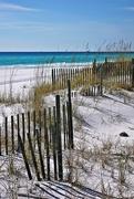 8th Nov 2014 - Miramar Beach
