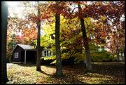 7th Nov 2014 - Home