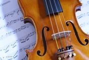 8th Nov 2014 - Violin
