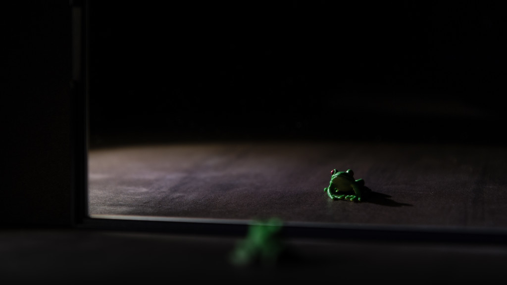 sometimes a frog is just a frog by northy