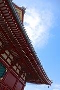 10th Nov 2014 - Japanese roof