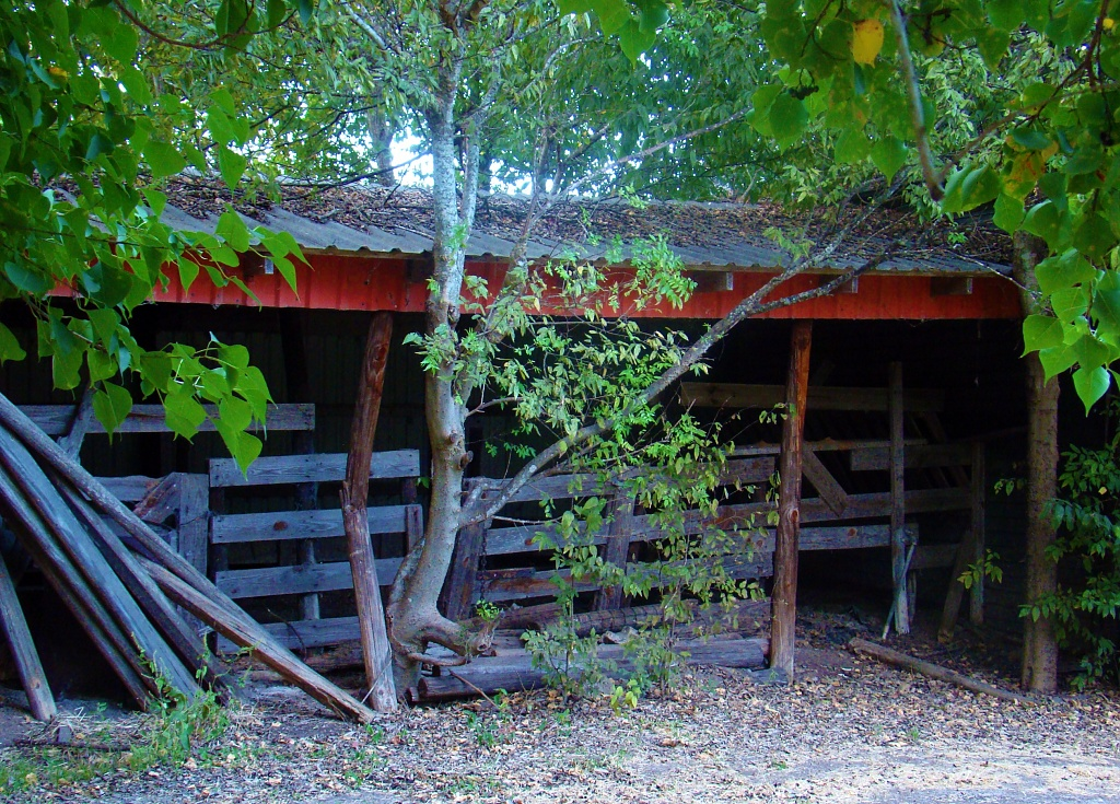 U is for Unoccupied Barn by dmrams