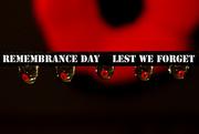 11th Nov 2014 - Lest we forget!