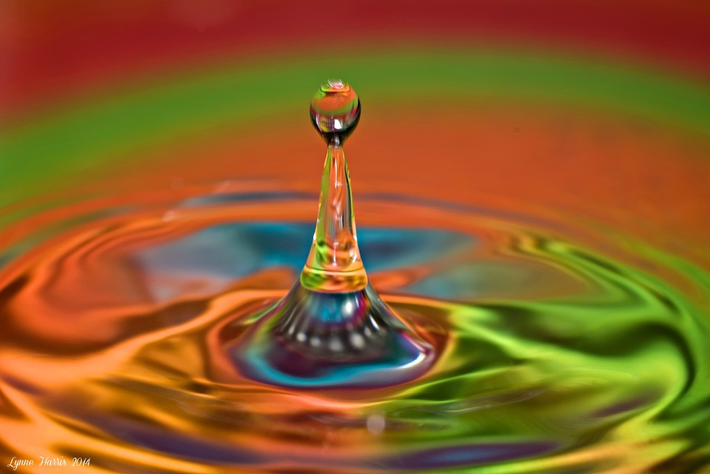 One More Water Drop by lynne5477