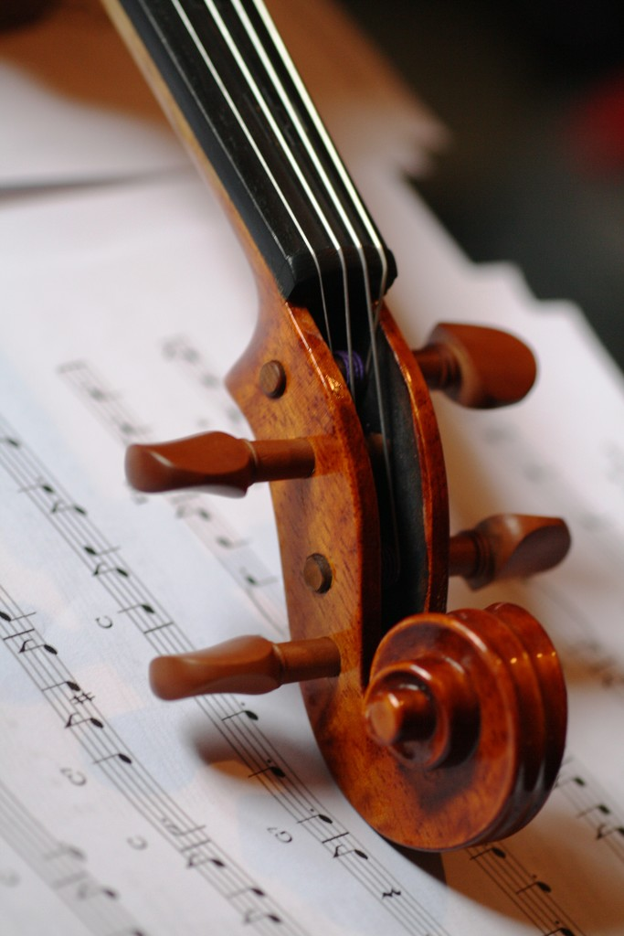 Violin Scroll by sarahlh