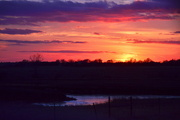 13th Nov 2014 - Pond Under Kansas Sunset