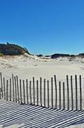 15th Nov 2014 - Sand, fence and shadows