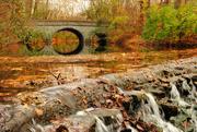 16th Nov 2014 - Through the Looking Glass Bridge