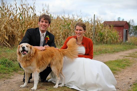 The Happy Couple by harvey