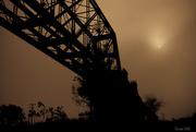 16th Nov 2014 - Light in the fog